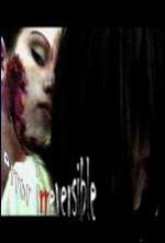 Error ırreversible (2007) afişi