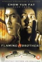 Flaming Brothers (1987) afişi