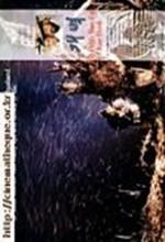 Fly High Run Far-kae Byok (1991) afişi