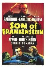Frankenstein'ın Oğlu