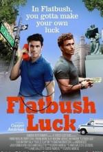 Flatbush Luck (2016) afişi