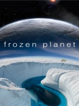 Frozen Planet (2011) afişi