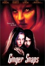 Kurt Kızlar (2000) afişi