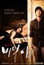 Gizli Aşk (ı) (2010) afişi