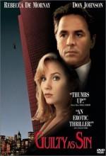 Günahkarlar (1993) afişi