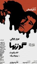 Gavaznha (1976) afişi
