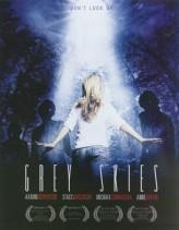 Grey Skies (2010) afişi
