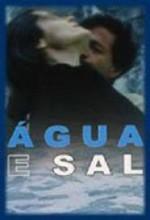 Água E Sal (2001) afişi