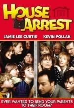 House Arrest (1996) afişi