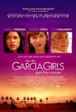 How The Garcia Girls Spent Their Summer (2005) afişi