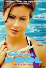 Hugo Pool (1997) afişi