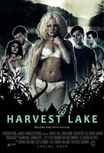 Harvest Lake (2016) afişi