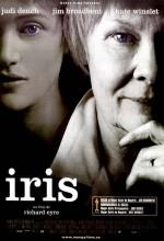 İris (2001) afişi