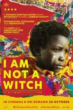 Ben Cadı Değilim (2017) afişi
