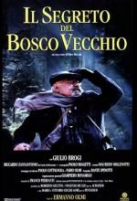ıl Segreto Del Bosco Vecchio (1993) afişi
