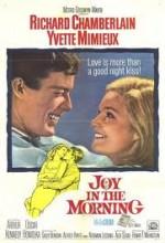 Joy In The Morning (1965) afişi