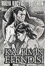 Kalbimin Efendisi (1970) afişi