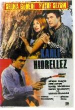 Kanlı Hıdrellez (1966) afişi