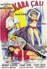 Kara Çalı (1956) afişi