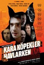 Kara Köpekler Havlarken (2009) afişi