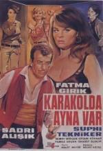Karakolda Ayna Var (1966) afişi