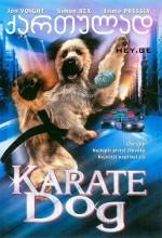 Karateci Köpek (2004) afişi