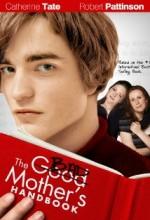 Kötü Annenin Elkitabı (2007) afişi