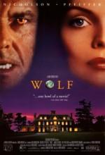 Kurt (1994) afişi