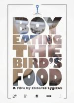 Kuş Yemi Yiyen Oğlan