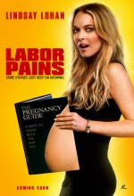 Doğum Sancıları (2009) afişi