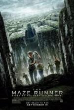 Labirent: Ölümcül Kaçış (2014) afişi