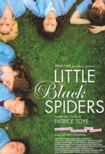 Little Black Spiders (2012) afişi