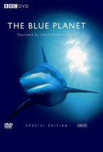 Mavi Dünya