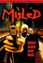 Misled (1999) afişi