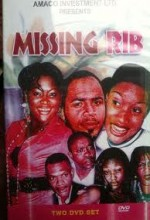 Missing Rib (2007) afişi
