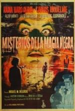 Misterios De La Magia Negra (1958) afişi