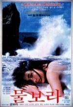 Mulbora (1980) afişi