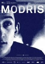 Modris (2014) afişi