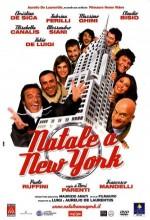 Natale A New York (2006) afişi