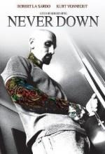 Never Down (2007) afişi