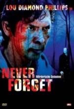 Never Forget (2008) afişi