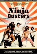 Ninja Busters (1984) afişi