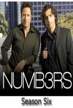 Numb3rs (2009) afişi