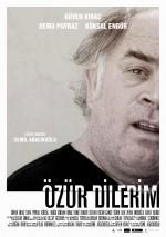 Özür Dilerim (2013) afişi