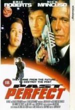 Past Perfect (1996) afişi