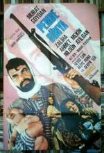 Pembe Dünya (1973) afişi