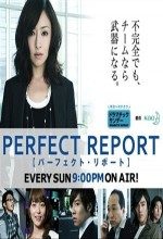 Perfect Report
