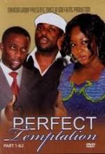 Perfect Temptation (2008) afişi