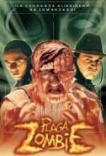 Plaga Zombie (1997) afişi