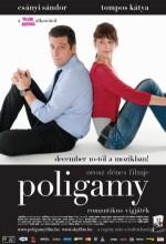 Poligamy (2009) afişi